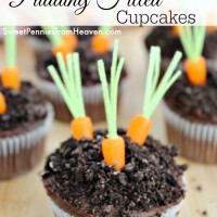 dirt and carrot cupcakes