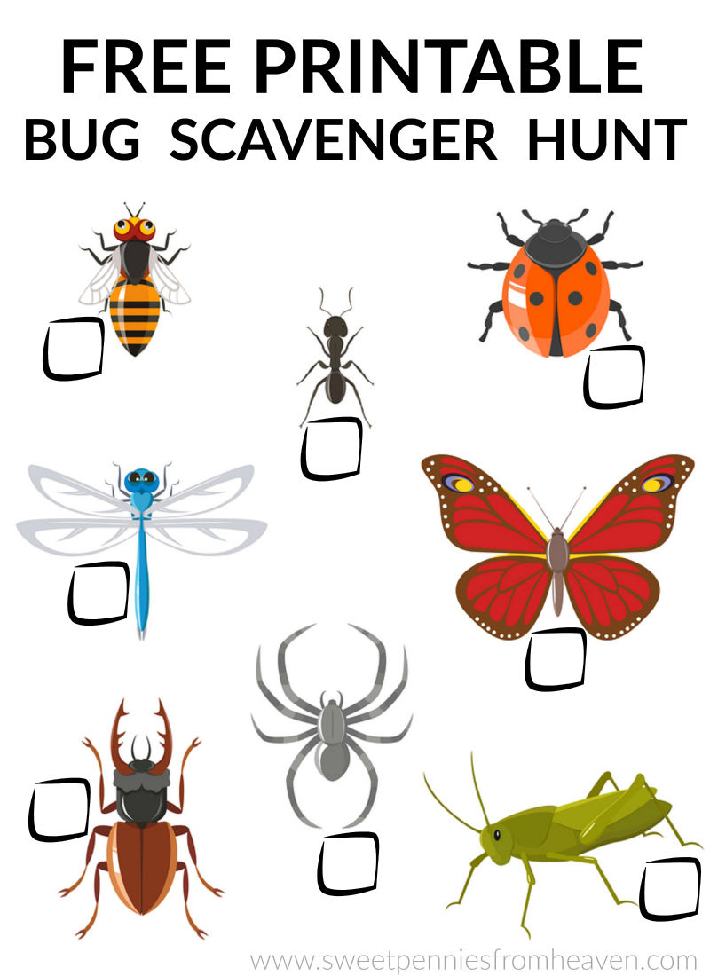 bug scavenger hunt free printable for kids!