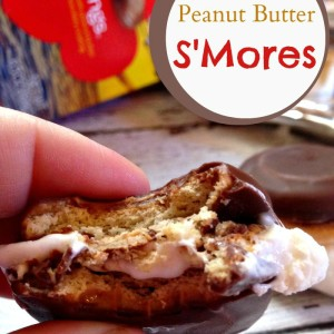 Tagalongs Peanut Butter S'Mores