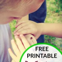 Bug Scavenger Hunt Free Printable + Live Life Outside Sweepstakes